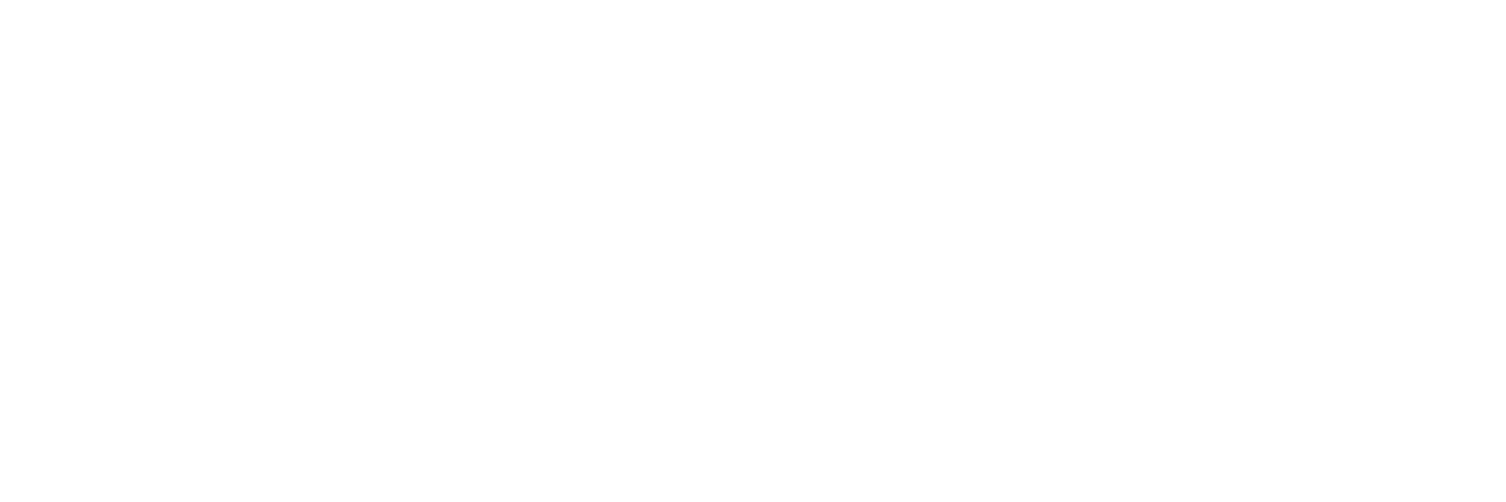 Mynewsday_Plain_Logo_White